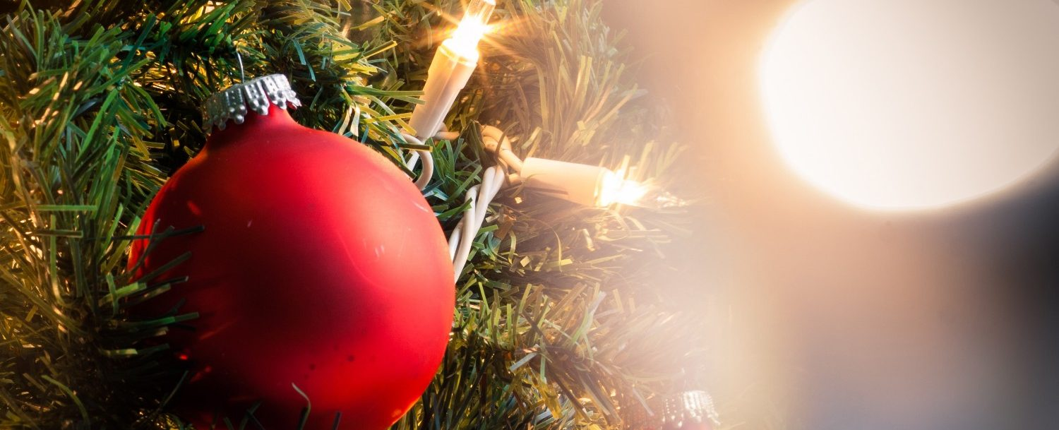 Close up of a Christmas tree branch with lights and decorations | Sandestin Tree Lighting