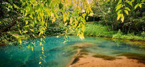 spring in Florida Panhandle turquoise water